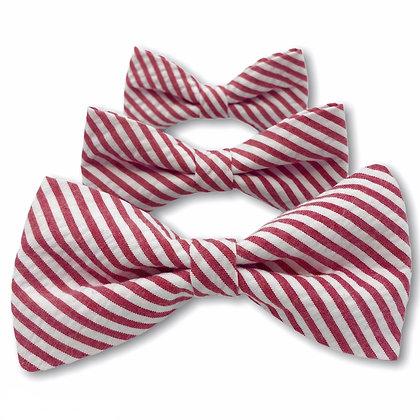 Red Seersucker Dog Bow Tie