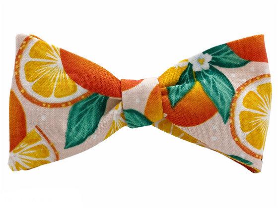 Wholesale Oranges