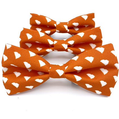 Orange South Carolina Bow Tie