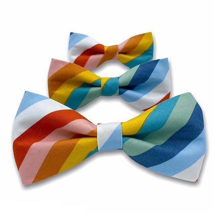 Multicolored Stripe Dog Bow Tie