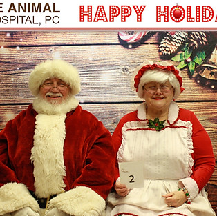2019 Avenue Animal Holiday Pictures