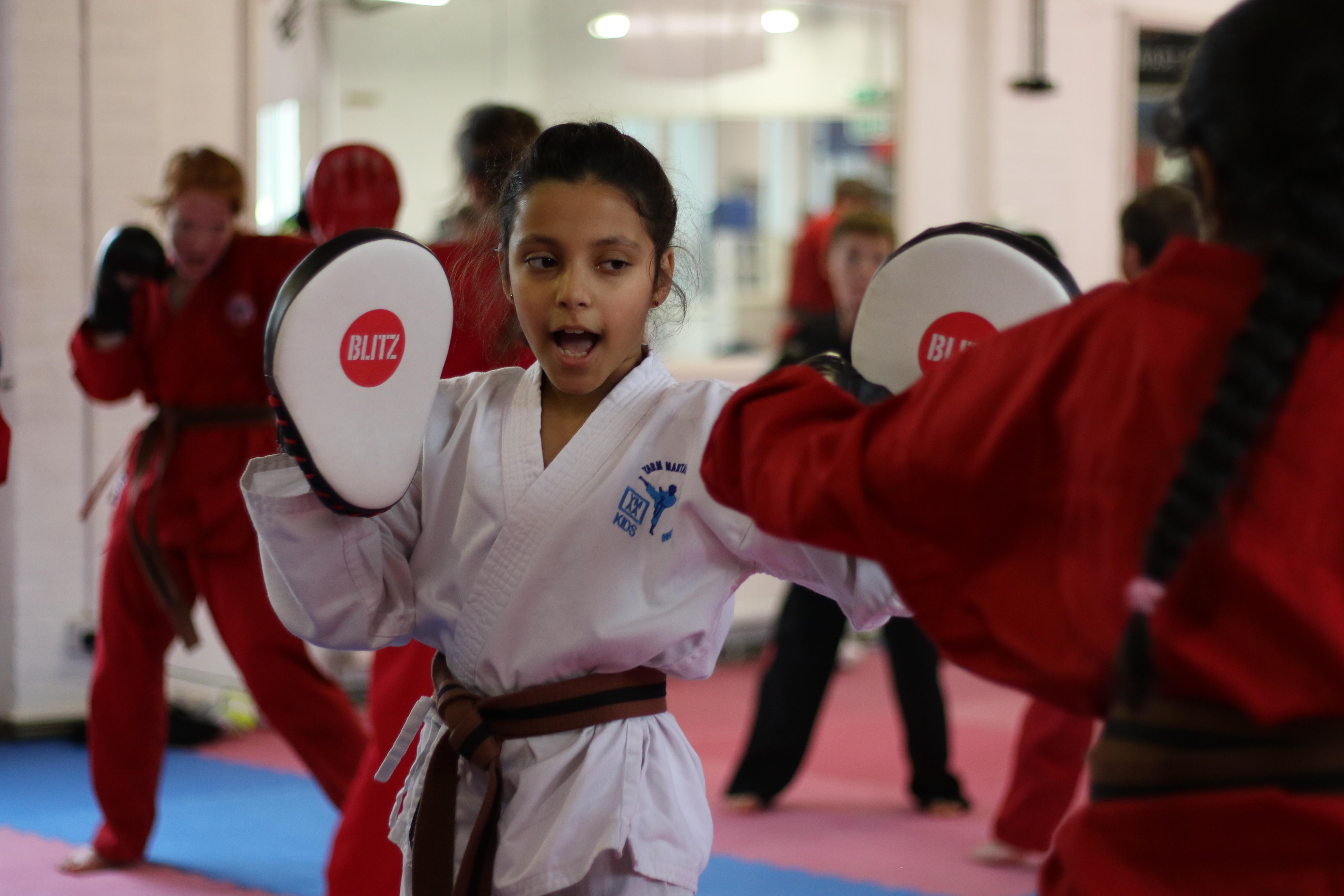 Karate Kids Online Class