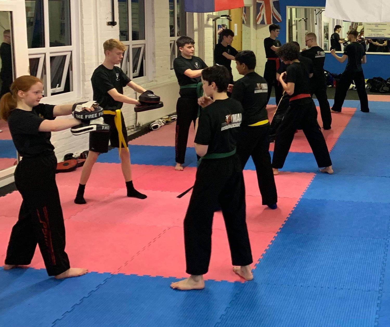 Kickboxing Online Class