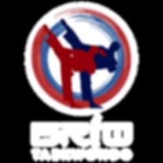 Brio Logo for Website-01.png