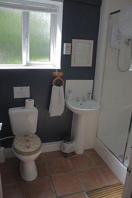 4 Shower Room.JPG