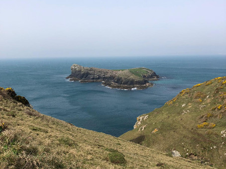Little Gwendreath Walk the South West Coast Path - Day 3 - Mullion Cove - Kynance Cove