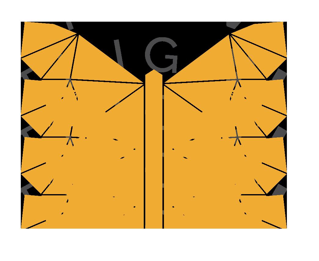 St vlinder.png