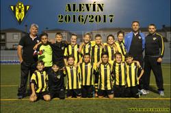 ALEVIN.JPG