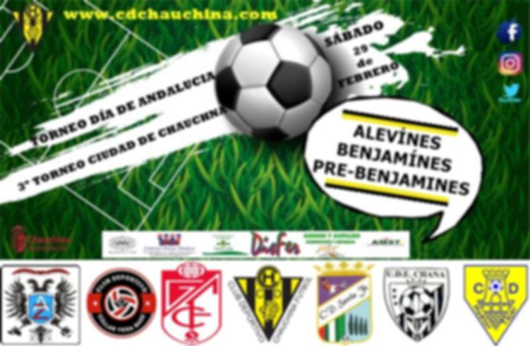 fondo-copa-campeonato-futbol_42237-108.j