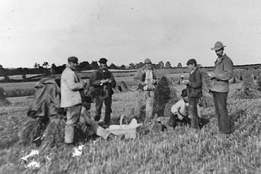 Harvest time in bygone days.  Six workers having a break for lunch