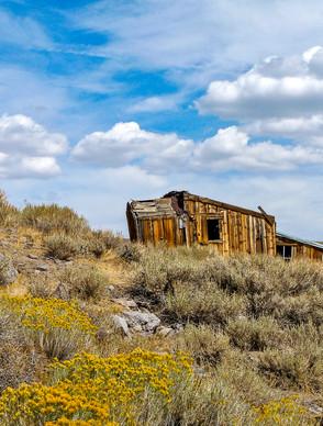 california-Bodie-tilting-ghost-town-hous