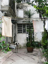 Cuba-backyard-with-dog-and-laundry-Havan