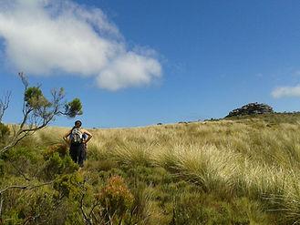Jenn on the mountain.jpg