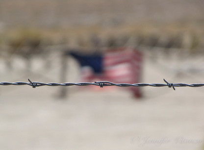 california-American-flag-barbed-wire-Man