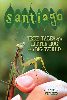 Santiago Front Cover.jpg