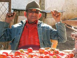 Cuba-man-and-his-tomatoes _JenniferVitan