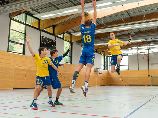 Absolut Handball auf facebook