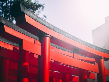 Japan auf dem Weg in die Handballweltspitze?
