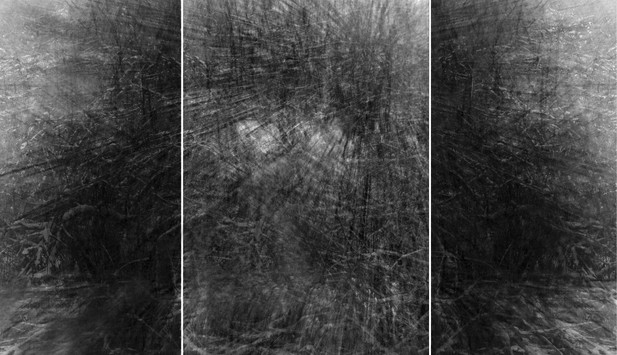 Hangwald-Triptychon II, 175 x 300cm, 201