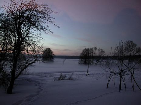 21_Von Bäumen, 2002, Fotografie, 30 x 40