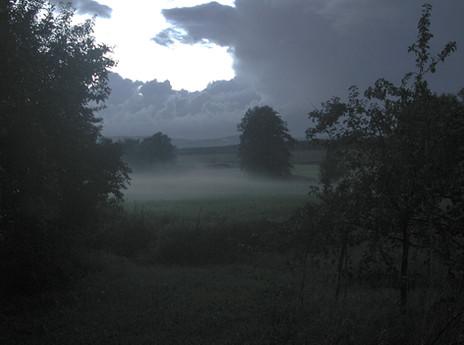17_Von Bäumen, 2004, Fotografie, 30 x 40