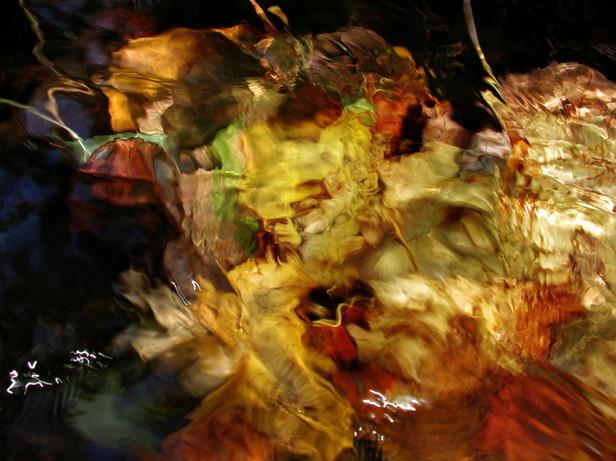 01_Unterwasserblätter, 2000, Fotografie,