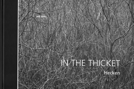 03_Jeff Beer - In the Thickett. Hecken,
