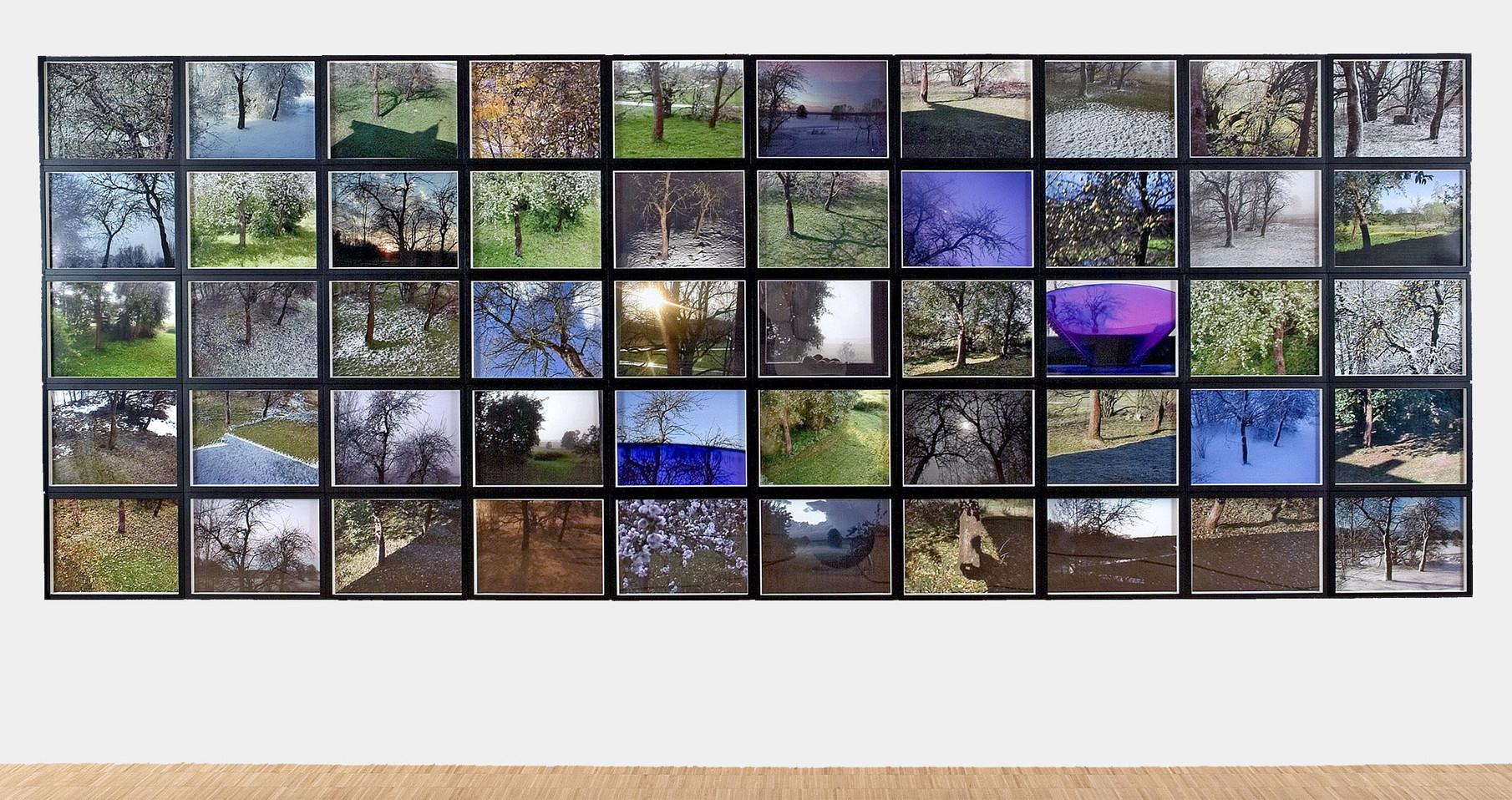 01_Von Bäumen, Fünfzig Blicke aus sieben