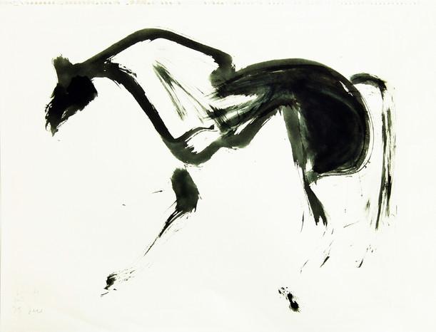 03c_Pferd.jpg