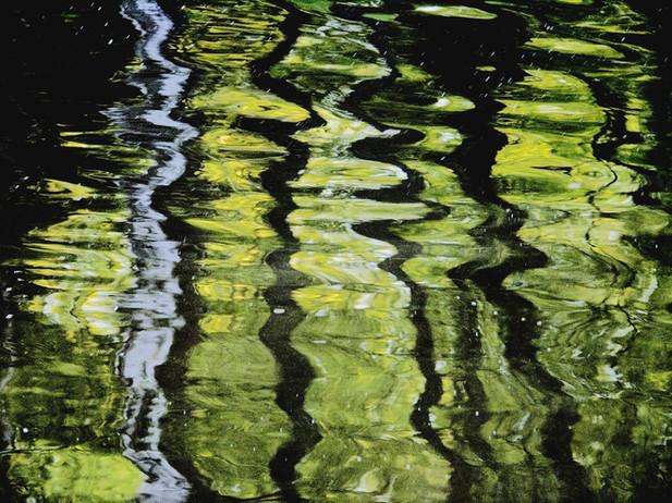 07_Vom Wasser - Waldnaab, 2005, Fotograf