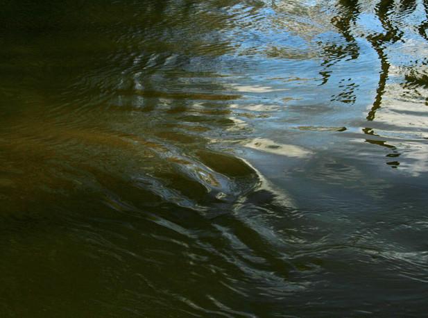 03_Vom Wasser, 2012, Fotogafie, 20 x 30c