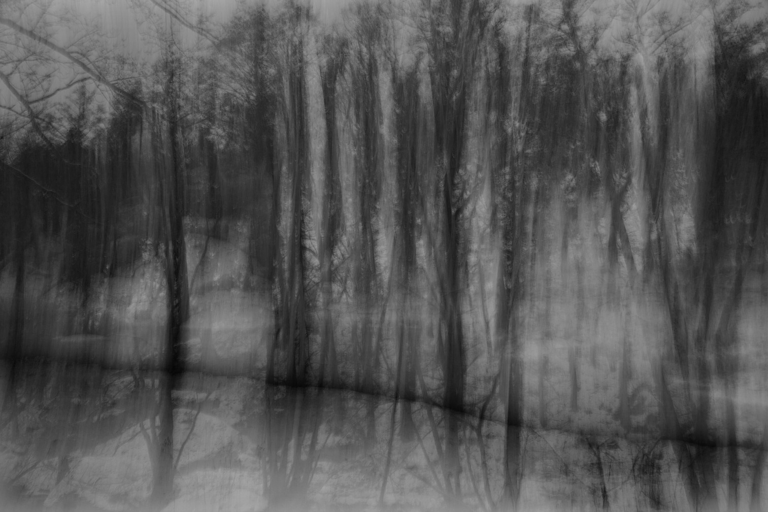 07_Hangwald (Schwarzer Fluss), 2013.jpg