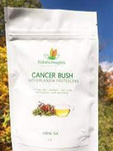 Cancer Bush Tea