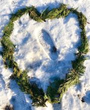 Giizhik Ode (Cedar Heart)