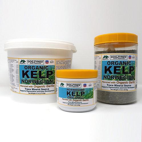 Dogzymes Organic Norwegian Kelp Enhanced with Garlic