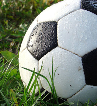 Programs for Sports Teams
