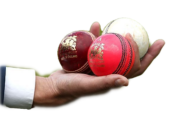 cricket balls in a hand