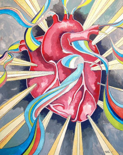 Colored Ventricles