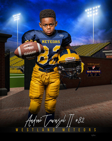 Andrae Townsel II home_turf_football_48x