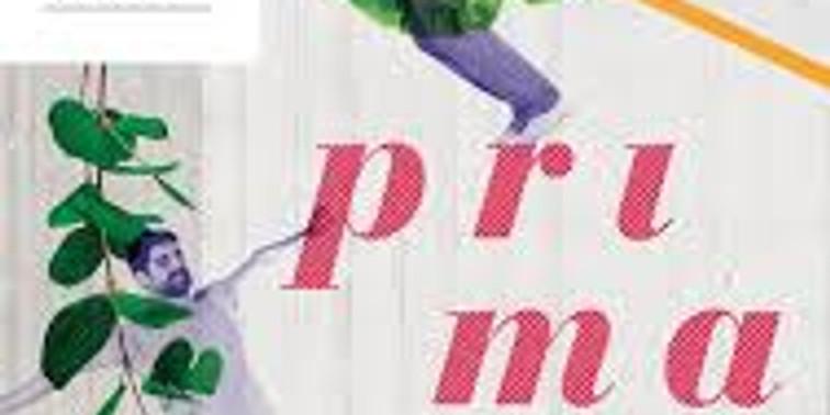 PRIMAVERA - JOURS DE DANSE - CCNN