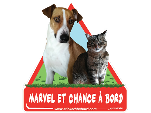 Marvel et Chance a bord