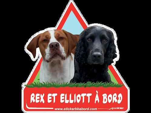 Rex et Elliott a bord