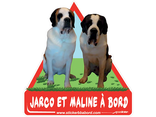 Jarco et Maline a bord