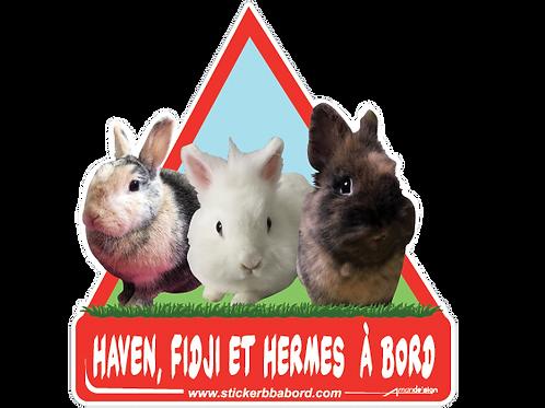 Haven, Fidji, et Hermes a bord