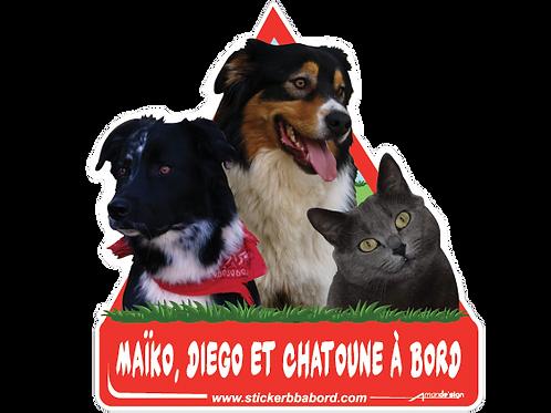 Maiko, Diego et Chatoune a bord