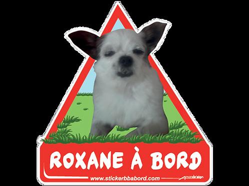 Roxane a bord