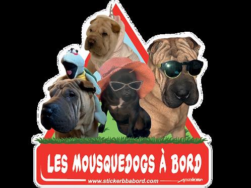 Les Mousquedogs a bord 2