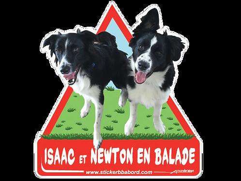 Isaac et Newton en balade