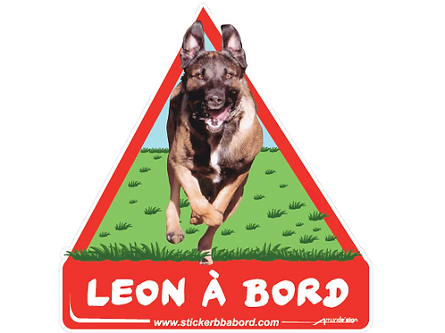 Leon a bord
