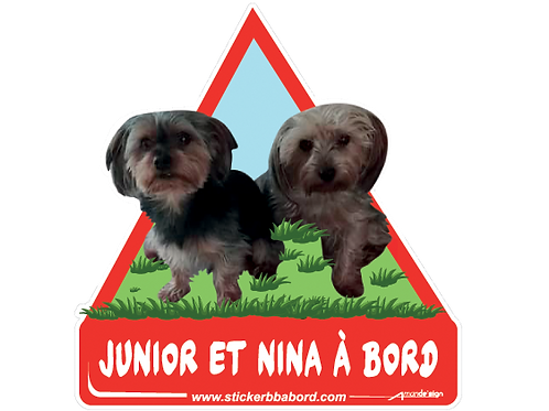 Junior et Nina a bord